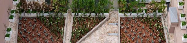 Tendencia en arquitectura Sustentable en Hoteles  – Spodek Arquitectos