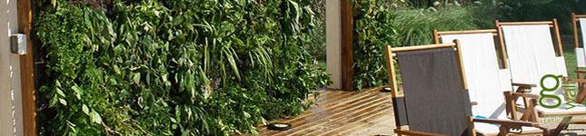 Jardines Verticales con diseño – G wall