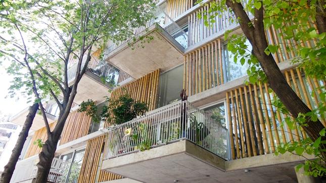 Cercos-de-bambu-para-la-arquitectura-Edificio-ANCON-Bambu-3