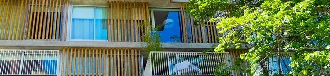 Cercos de bambú para la arquitectura – Edificio ANCON – Bambú Guazú