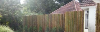 cercos-de-caa-de-bambu-para-divisiones-exteriores-portada
