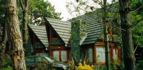 aserradero-y-maderas-para-techos-en-zona-oeste-blarasin-e-hijos-la-empresa-empresa-3