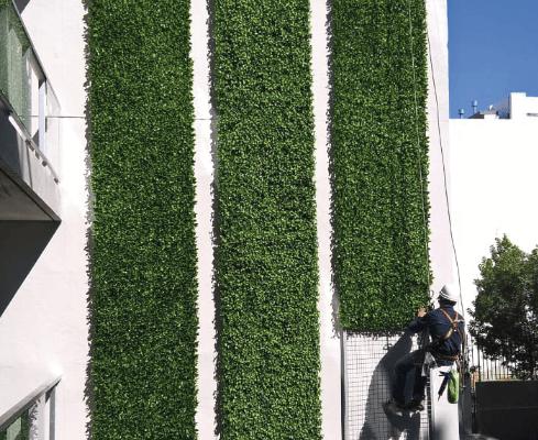 Jardines Verticales artificiales en Capital – Just Green