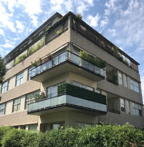 Muro verde sin mantenimiento para balcones – Just Green