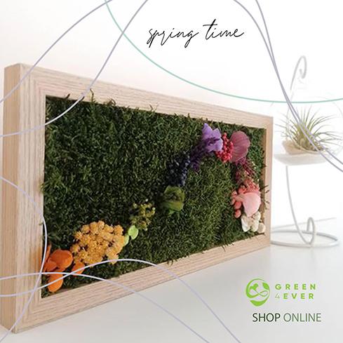 Cuadros florales sin mantenimiento en Capital – Alles Grun